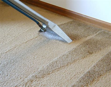 water extraction vs steam cleaning the carpet cleaner