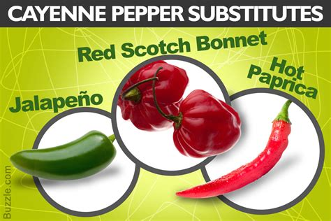 Cayenne Pepper Substitute For Detox by And Hotter Substitutes Of Cayenne Pepper For Your Kitchen