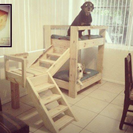 dog bunk bed dog bunk beds from pallets for my critters pinterest
