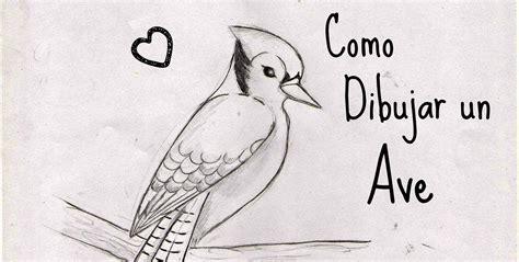 como dibujar un pajaro como dibujar un ave sencilla youtube