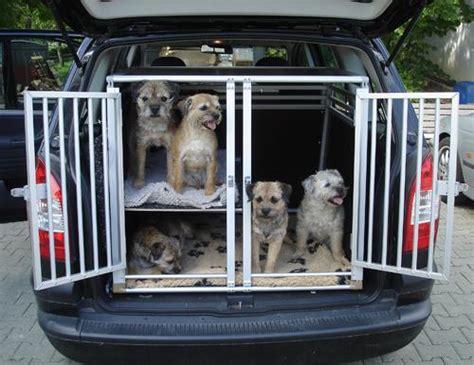 hundeboxen sonderanfertigungen