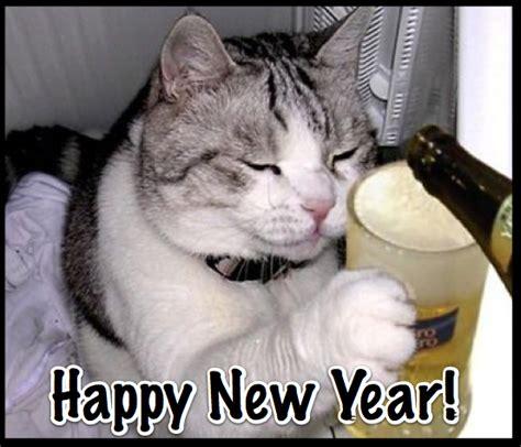 Happy New Year Cat Meme - precious runner december 2011