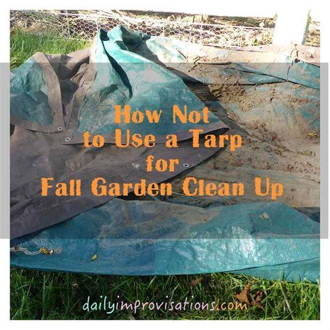fall garden clean up how not to use a tarp for fall garden clean up