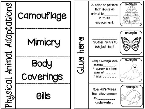 Adaptation Worksheet by Snaps November 2013