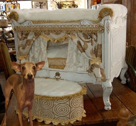 fancy dog beds rules of the jungle designer dog beds