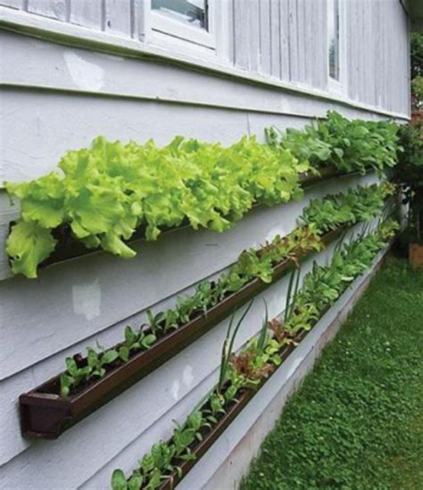 small vegetable garden gutter gardens grow produce without taking up space