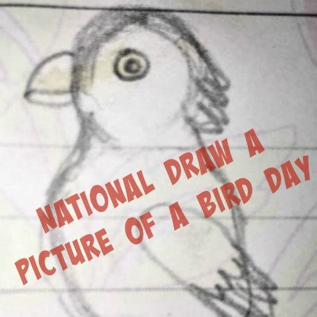 national draw  picture   bird day slightly  kilter