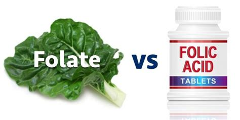 Mthfr Folic Acid Detox by 1000 Images About Mthfr And Methylation On