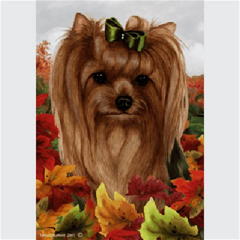 show me a yorkie yorkie show cut fall leaves flag furrypartners