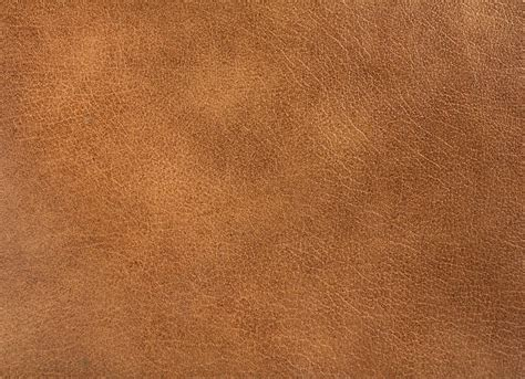 Leather Images by Leather Pictures Images And Stock Photos Istock
