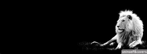 black white covers black and white covers animales fb cover