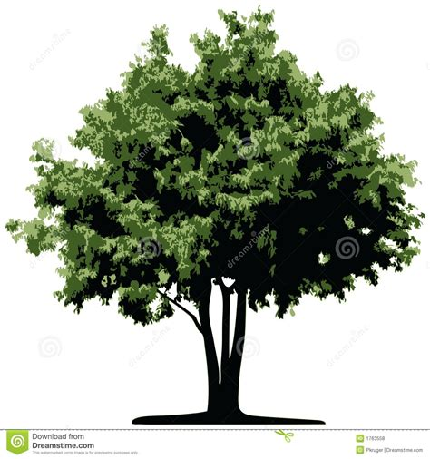 tree image tree vector stock vector image of elements leafs