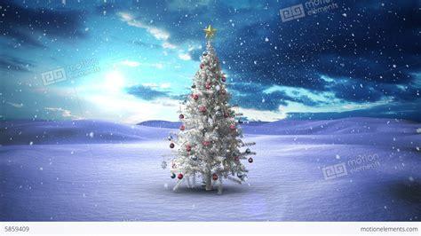 snow falling christmas tree rainforest islands ferry