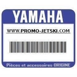 Cylinder Assy 318 Yamaha Promo Jetski