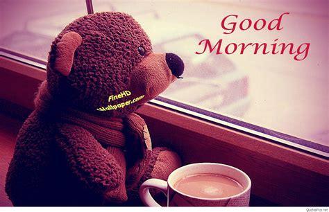 romantic good morning wallpaper  teddy bear quotes pics