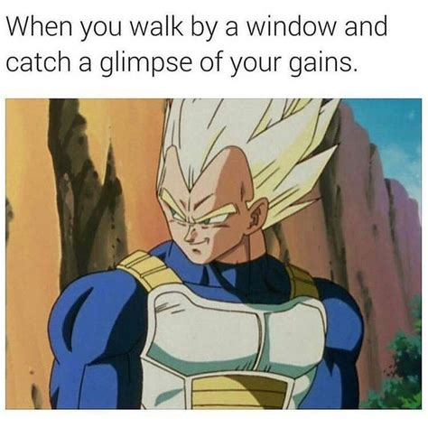vegeta memes 235 best images about z memes on