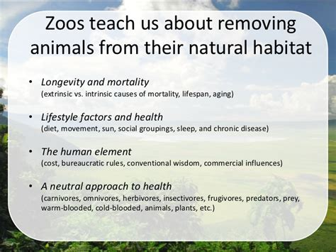 nature medicine essays on wildness and wellness books animals zoos and you the influence of habitat on