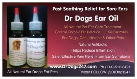 ear medicine for dogs dr dogs ear faq