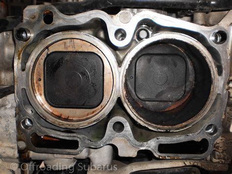 average cost to gasket replaced autos post