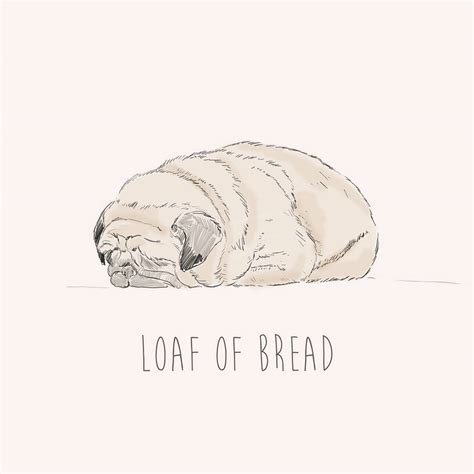 pug loaf of bread loaf of bread pug by ben rothery illustrator notonthehighstreet