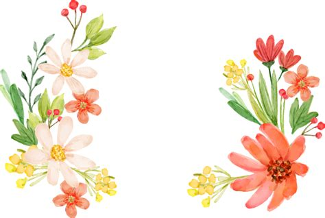 clipart flower flowers vectors png transparent free images png only