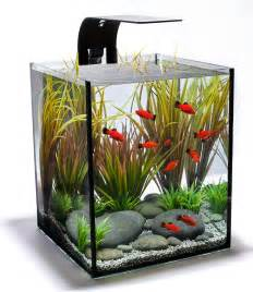 Small Desktop Fish Tank Small Fish Tank Designs Freshwater Fish Tanks Design
