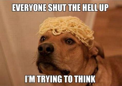 Stoner Dog Meme - stoner dog meme 20 pix of the funny meme based off 10 guy heavy com page 10