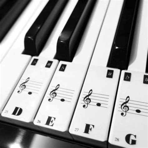 piano and keyboard note stickers piano keyboard electronic keyboard stickers decal label