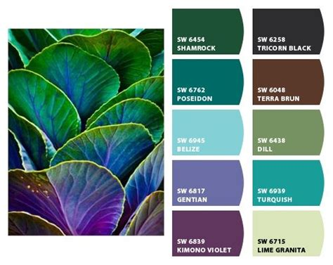 great colour combinations different and great color schemes pinterest