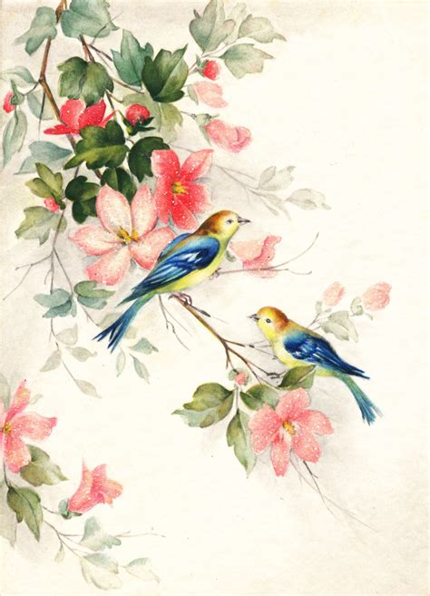 printable flowers and birds flickr photo sharing