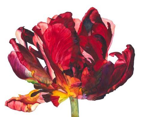 rosie sanders flowers a 1849943974 rosie sanders flowering ii jonathan cooper