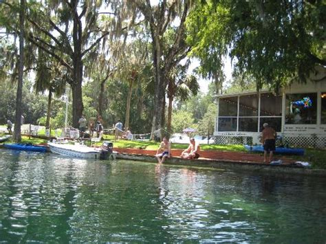 right where we belong silver springs silver springs picture of ocala central florida