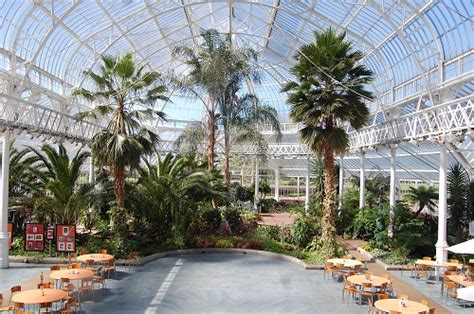 glasgow winter gardens winter gardens glasgow green scotland