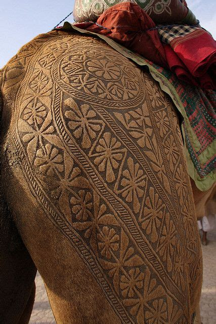tattoo online shopping in pakistan 17 best ideas about camel tattoo on pinterest picasso