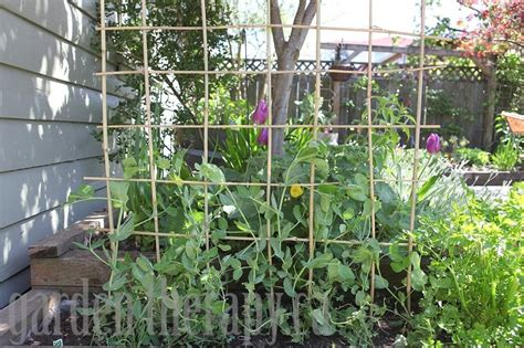 build a garden trellis how to make a diy bamboo trellis