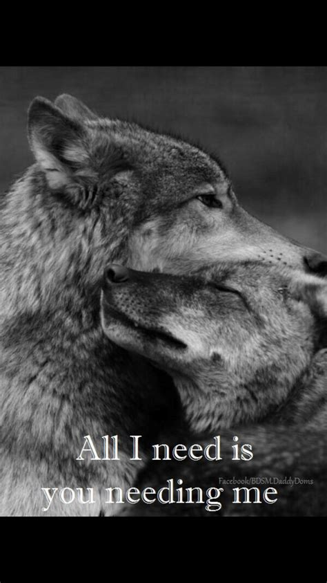 images  lone wolf  pinterest  spirit   awesome  bob marley quotes