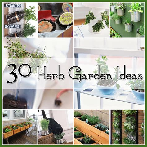 ideas for herb garden 30 great herb garden ideas