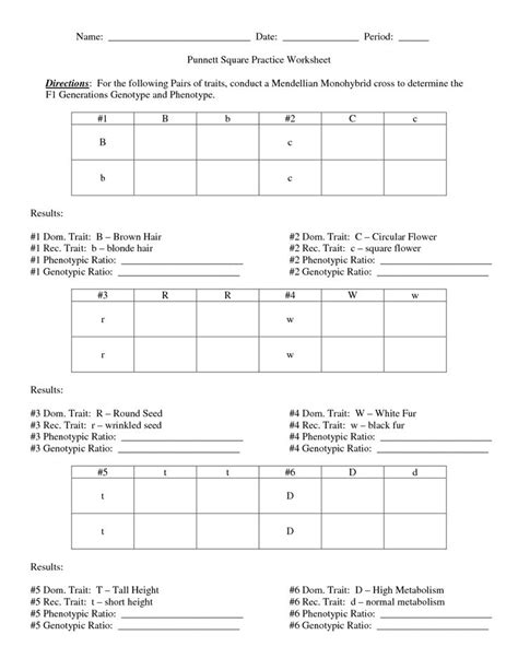 Punnett Square Practice Worksheet by Pin By Norfleet On Education