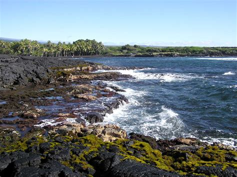 picture photo black sand beach at punaluu big island punalu u black sand beach hawaii pictures