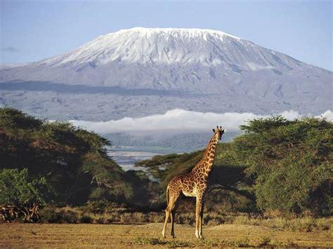 consolato tanzania tanzania quella terra strappata ai masai noi giovani