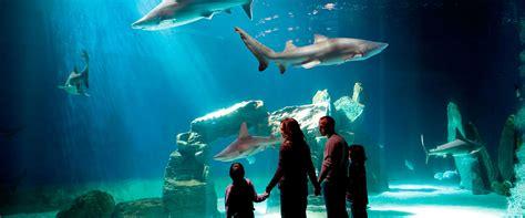 ingresso acquario di genova offerta acquario di genova biglietti d ingresso 29