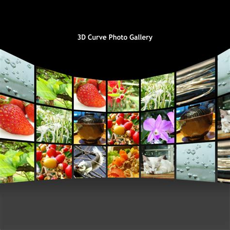 flash photo gallery templates free flash template 122 3d curve gallery