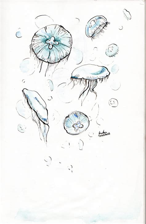 moon jellyfish by suku7 on deviantart