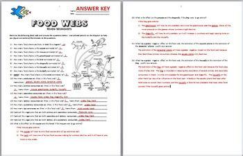 Food Web Worksheet Answer Key