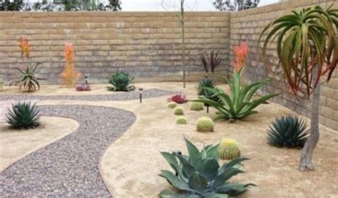 desert landscape ideas for backyards wonderful small backyard desert landscaping ideas garden