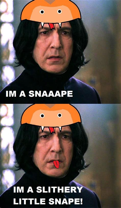 Snape Meme - 17 best images about funny on pinterest laughing cats