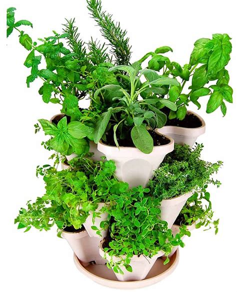 indoor vegetable growers  herb planters
