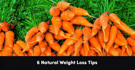 1 weight loss tip 6 weight loss tips psychology of