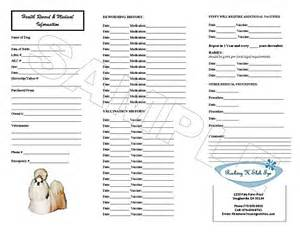 pet health record template 28 health record template printable puppy