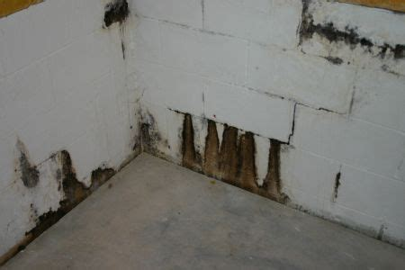 Basement Water Seepage   Part 1